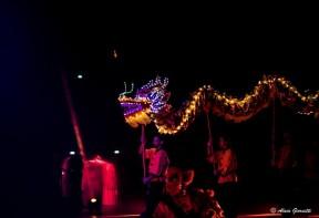Dragon de la Grande Nuit des Arts Martiaux
