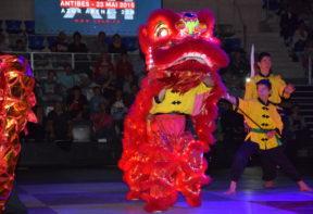Danse du Lion rouge XII GNAM