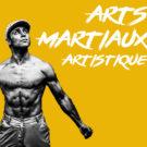 Arts Martiaux Artistiques - Loic Molla