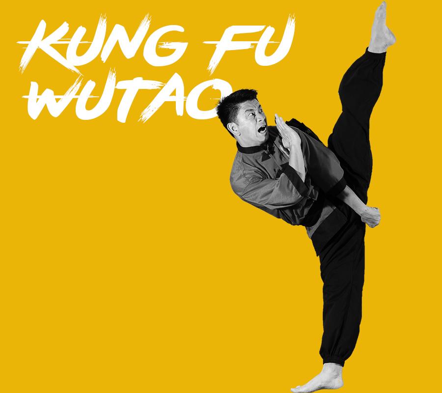 Démonstration de Kung Fu Wutao par l'Ecole Hoang Nam